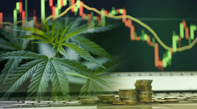 Top Marijuana Stocks on the NASDAQ