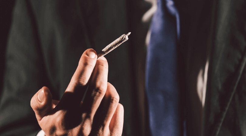 How to Start a Cannabis Business On a Budget