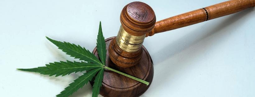 Cannabis Legal Services