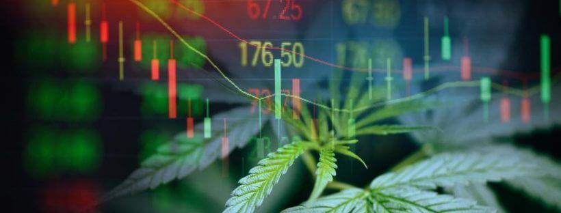 Marijuana Stocks Have Dropped