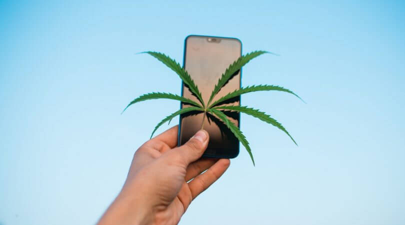 What Are Cannabis Influencers