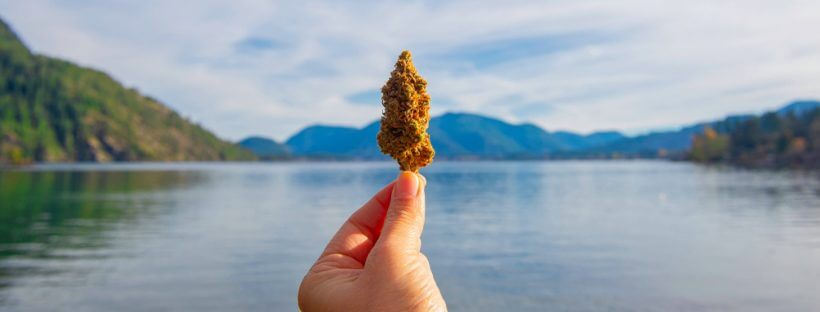 Benefits Of Marijuana Tourism