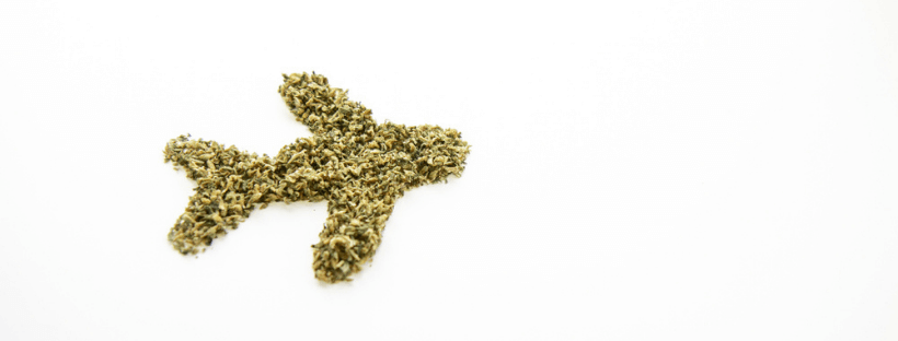 How To Promote Your Business To Marijuana Tourists