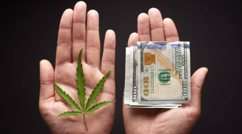 Where to Find Cannabis Business Loans in 2021