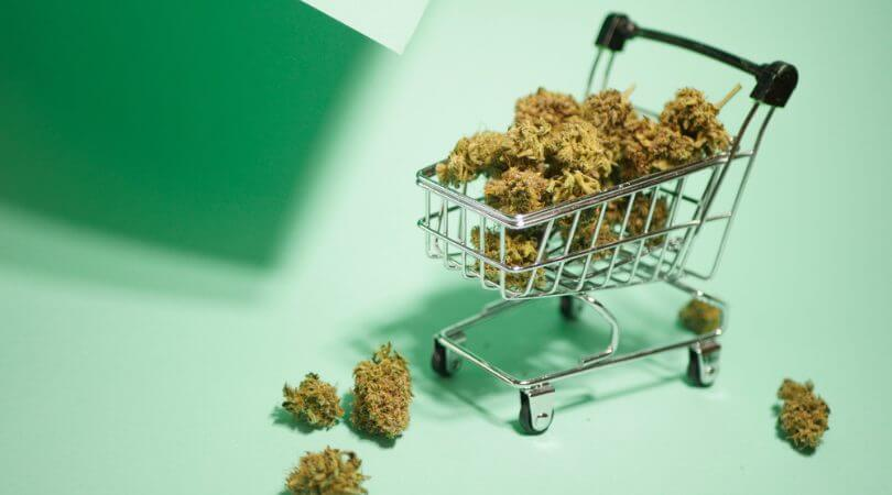 Franchising vs Licensing for Your Cannabis Business