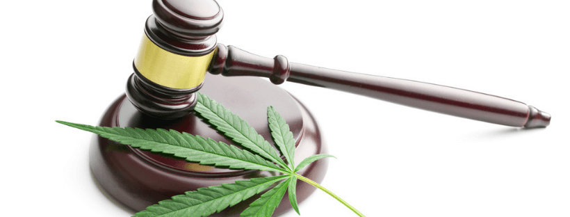 Continued Hemp and Cannabis Legalization